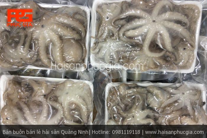 Bạch tuộc Phúc Gia - Đặc sản vùng biển Hạ Long