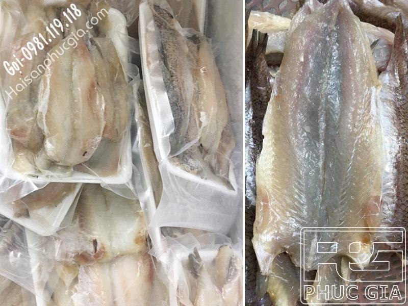 Địa chỉ uy tín sỉ lẻ bán cá mối 1 nắng rẻ ngon bao nhiêu tiền 1 kg